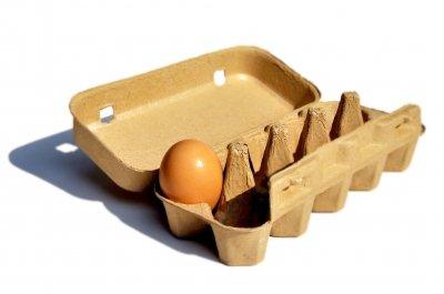 coQ10 egg health quality